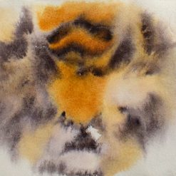 Hanna-Kaisa Korolainen Tigre 8