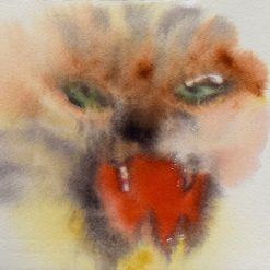 Hanna-Kaisa Korolainen Tigre X